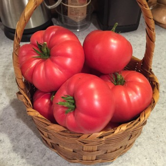 tomato-basket